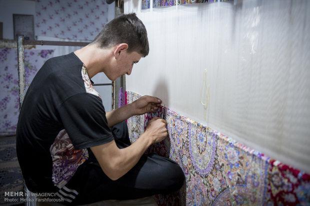 6500 دار قالی در زنجان شناسنامه دار شد