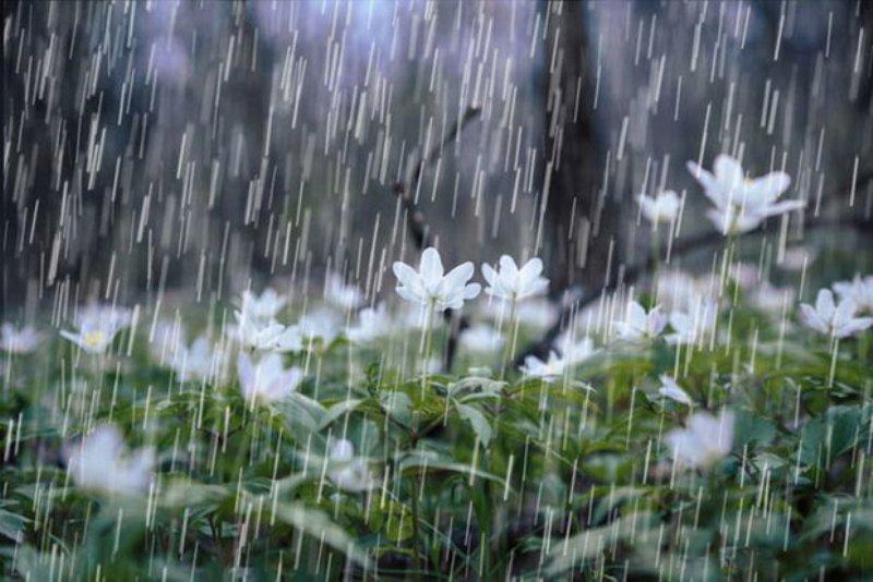 سامانه بارشی مهمان چند روز آینده کشور در آستانه نوروز