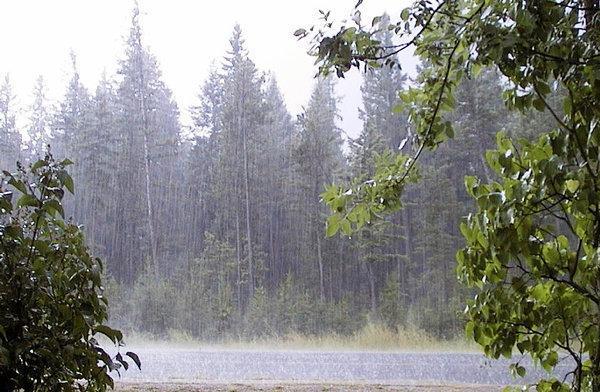 باران شدید برای جنوب و غرب کشور ، برف هم می بارد