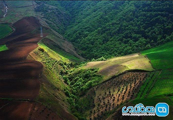 جنگل های هیرکانی ایران ثبت جهانی شدندعزم جدی برای ثبت جهانی هیرکانی