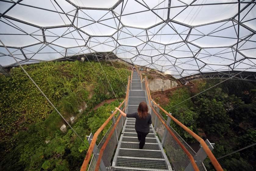 ساخت یک جنگل شهری در چین
