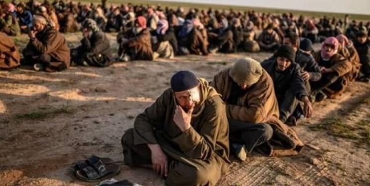 مخالفت قاطع کمیته امنیت مجلس عراق با پذیرش داعشی ها