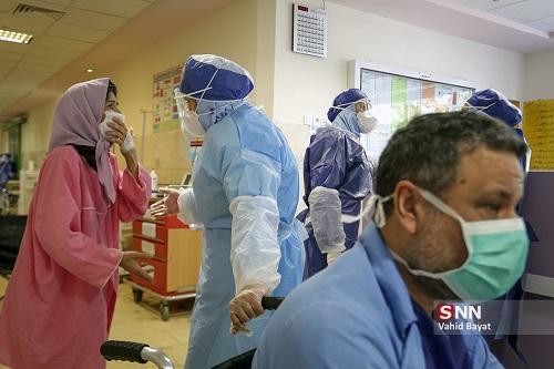 تعداد مبتلایان به کرونا در بوشهر به 38 نفر رسید