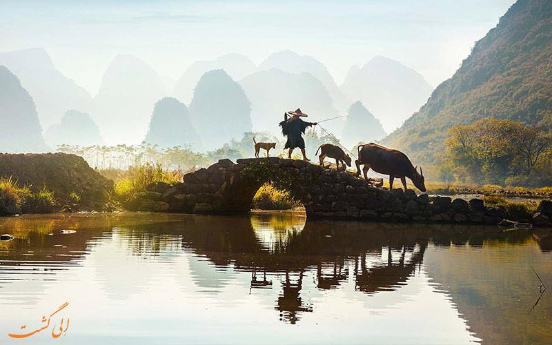 طبیعت رمز آلود چینی در شهر یانگشو