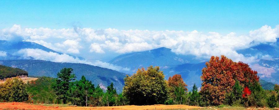 معرفی جاذبه گردشگری و زیبای جنگل ابر
