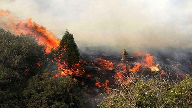 زبانه کشیدن آتش در تالاب شیمبار اندیکا