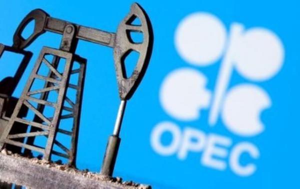 صادرات نفت اوپک افزایش یافت